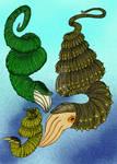Didymoceras species 01