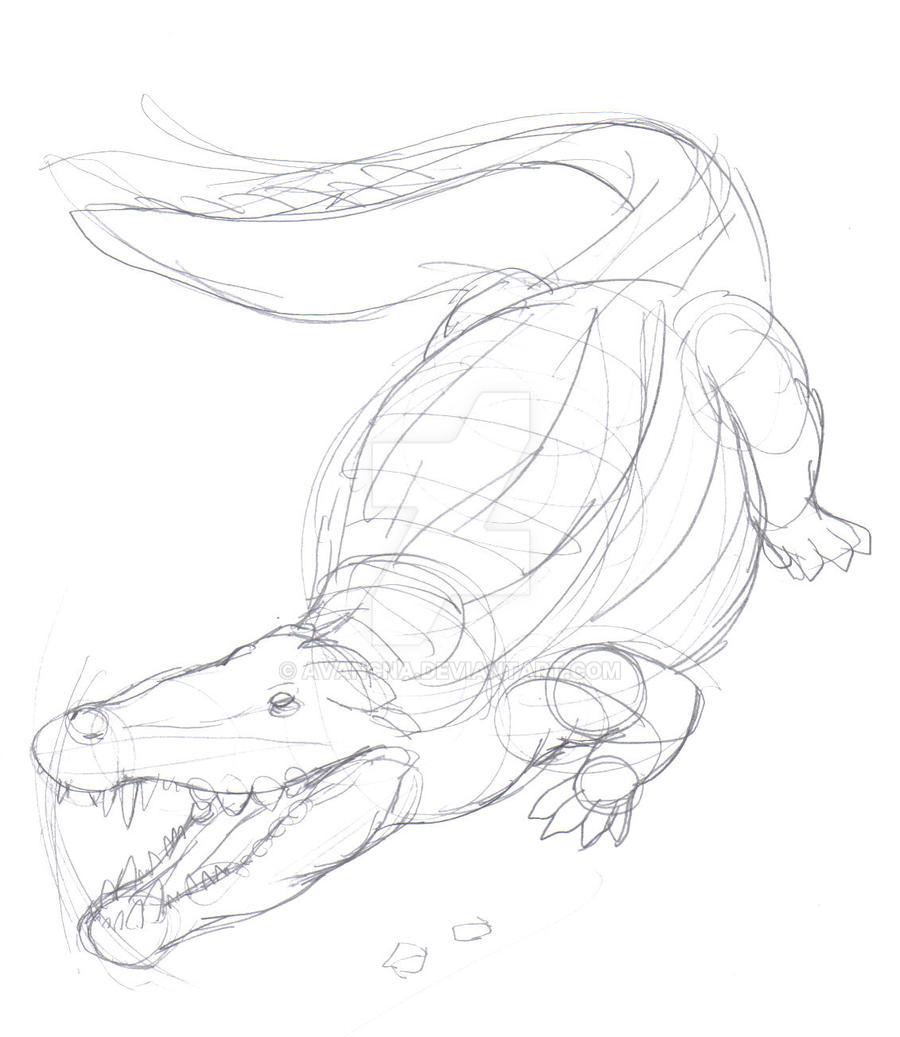 Sketch Deinosuchus by avancna