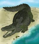 Deinosuchus rugosus