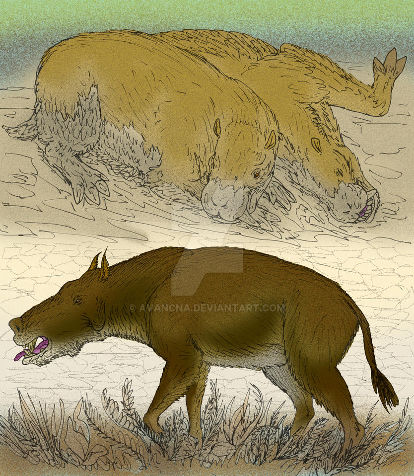 Archaeotherium and Achaenodon by avancna