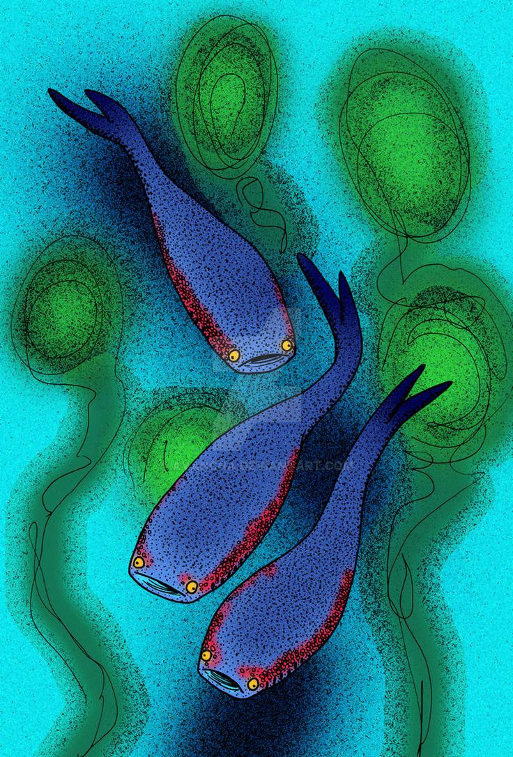 Archipelepis turbinata by avancna