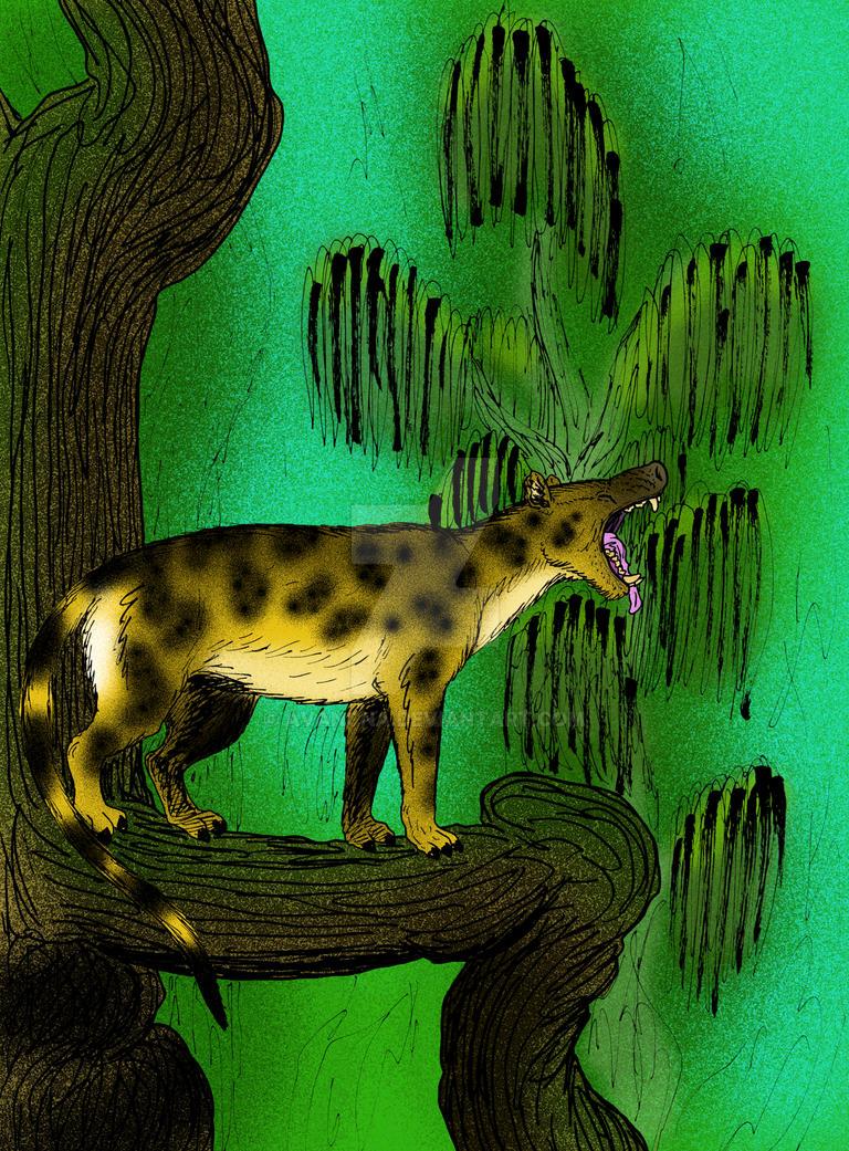 Mesonyx obtusidens by avancna