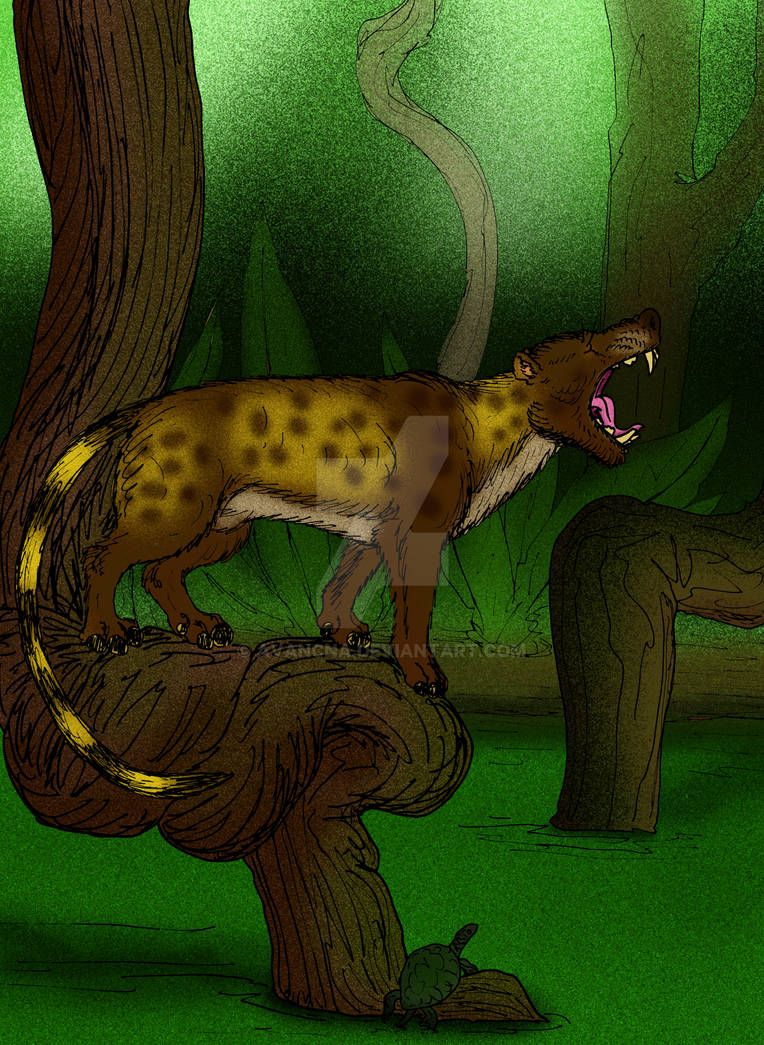 Mesonyx obtusidens