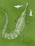 Rhamphosuchus crassidens V1