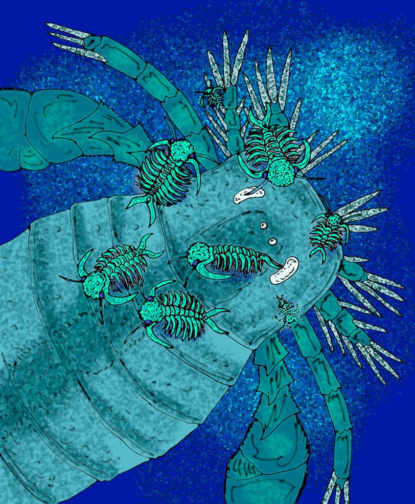 Eurypterus remipedes by avancna