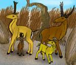 Miocene Pronghorns