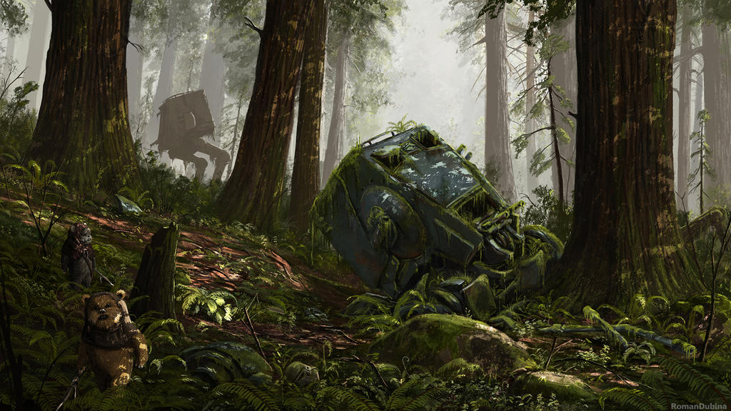 After the Battle of Endor by RomanDubina