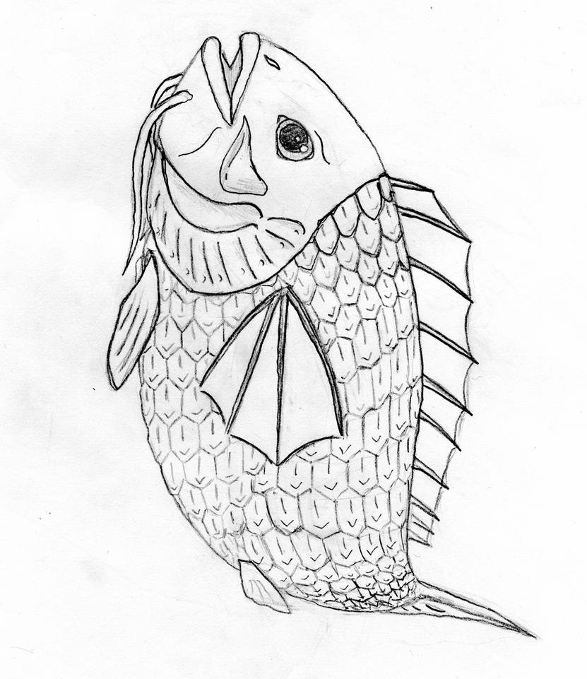 Line Drawing Of Fish : Line drawings of fish myideasbedroom