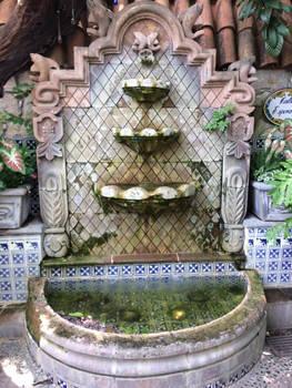 Algae in the Fountain