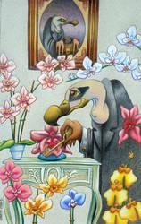Hidden garden's- Marty-Crouz by childrensillustrator