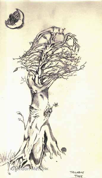 Trilobite Tree