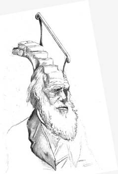 Darwin Took Steps drawing