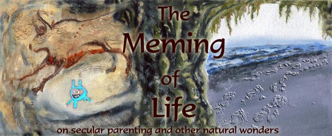 Meming of Life blog banner