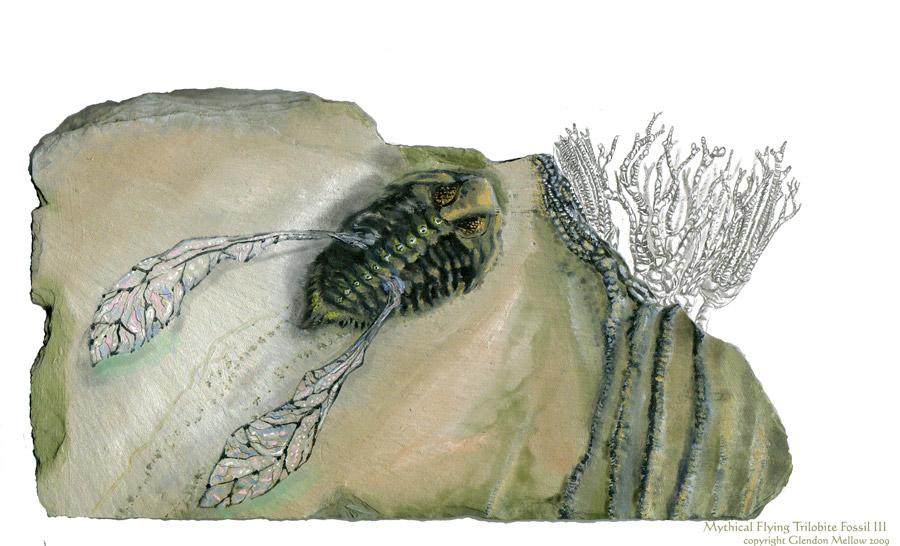 Flying Trilobite Fossil III