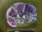 Symbiosis, Tardigrade -detail