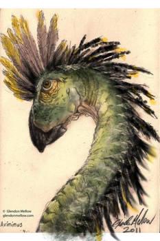 Avimimus - iPhone painting