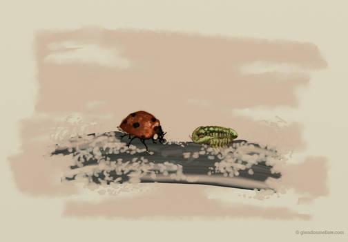 Arthropod Meeting