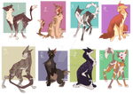 Warrior Cats Adopts 5  CLOSED