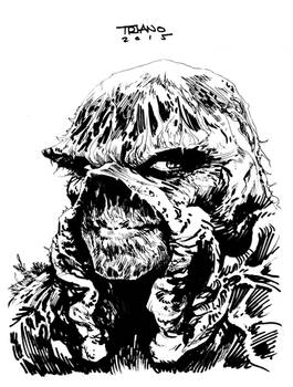 SWAMP THING COMMISSION