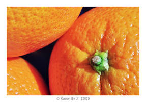 Juicy by karenbirch