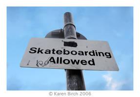 Skateboarding Allowed by karenbirch
