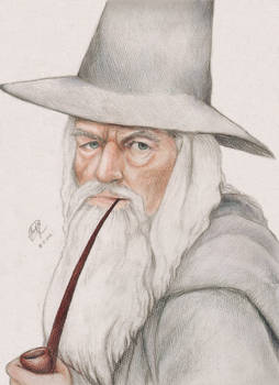 Gandalf the Grey