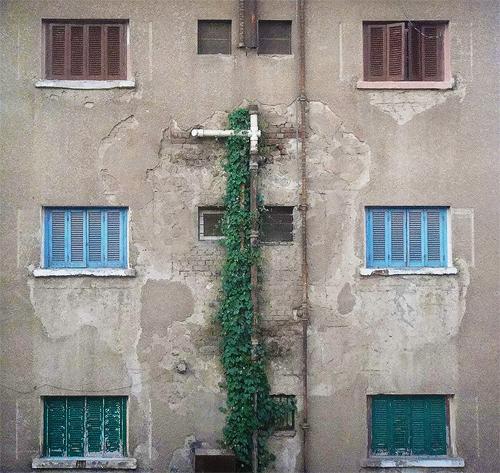 Windows by ArabicKid