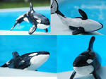 Orca sculp