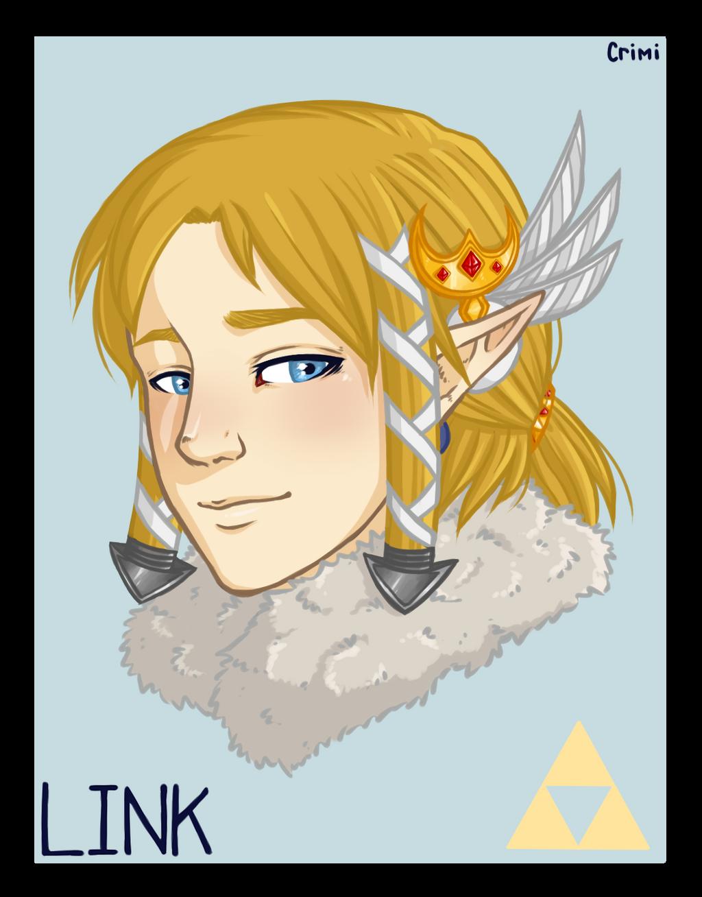 Link - Zelda BotW by Crimi-Azna