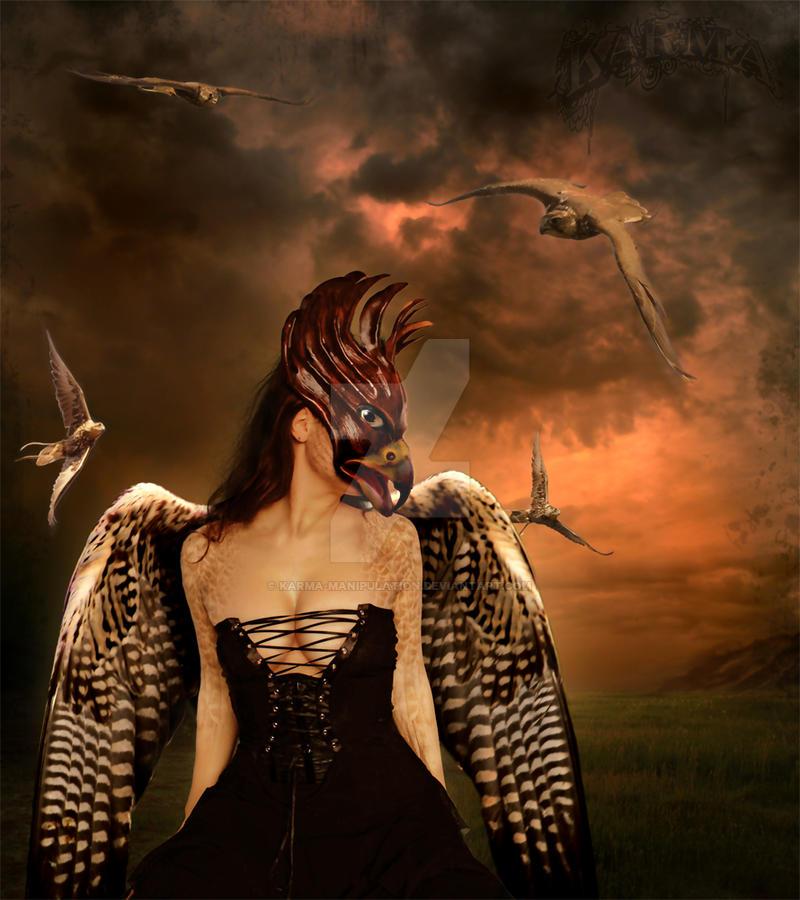 Falkon Queen by Karma-Manipulation
