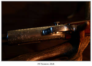 Engraved FN 5
