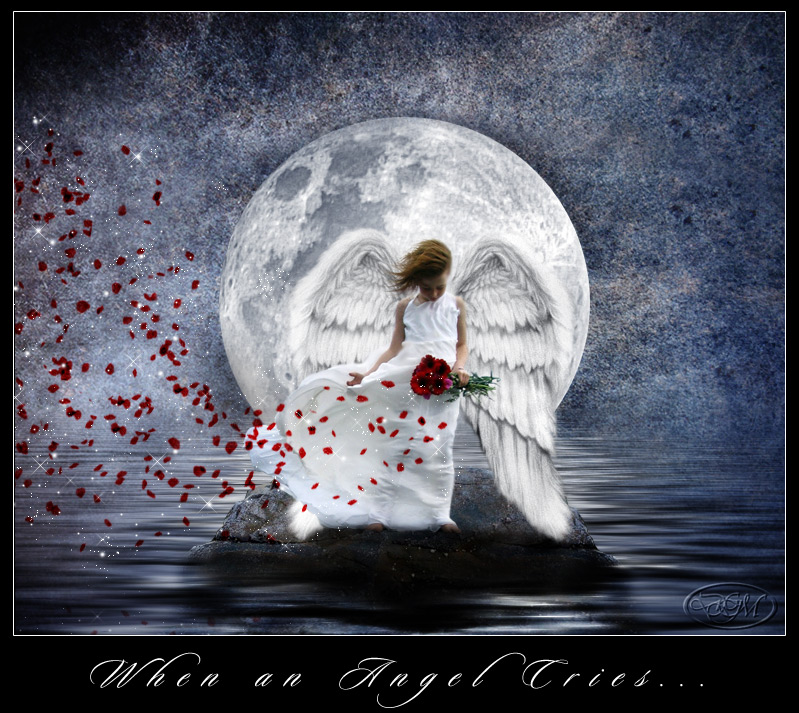 MOON NIGHT - Página 6 When_an_Angel_Cries____by_medusa04