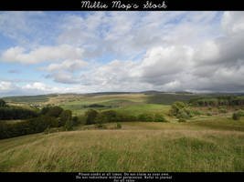 Scotland The Brave by Millie-Mops-Stock