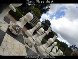 Rustic White Pawns by Millie-Mops-Stock