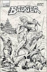 BADGER 16 COVER 1986 by BillReinhold