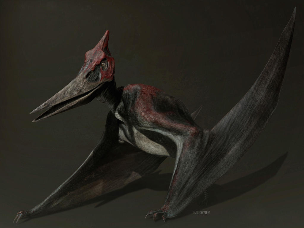Jurassic World Concept Art - Pteranodon by IndominusRex on ...