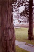 Nature Flip by Quarl
