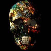 Skull Drug by Quarl