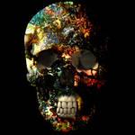 Skull Drug