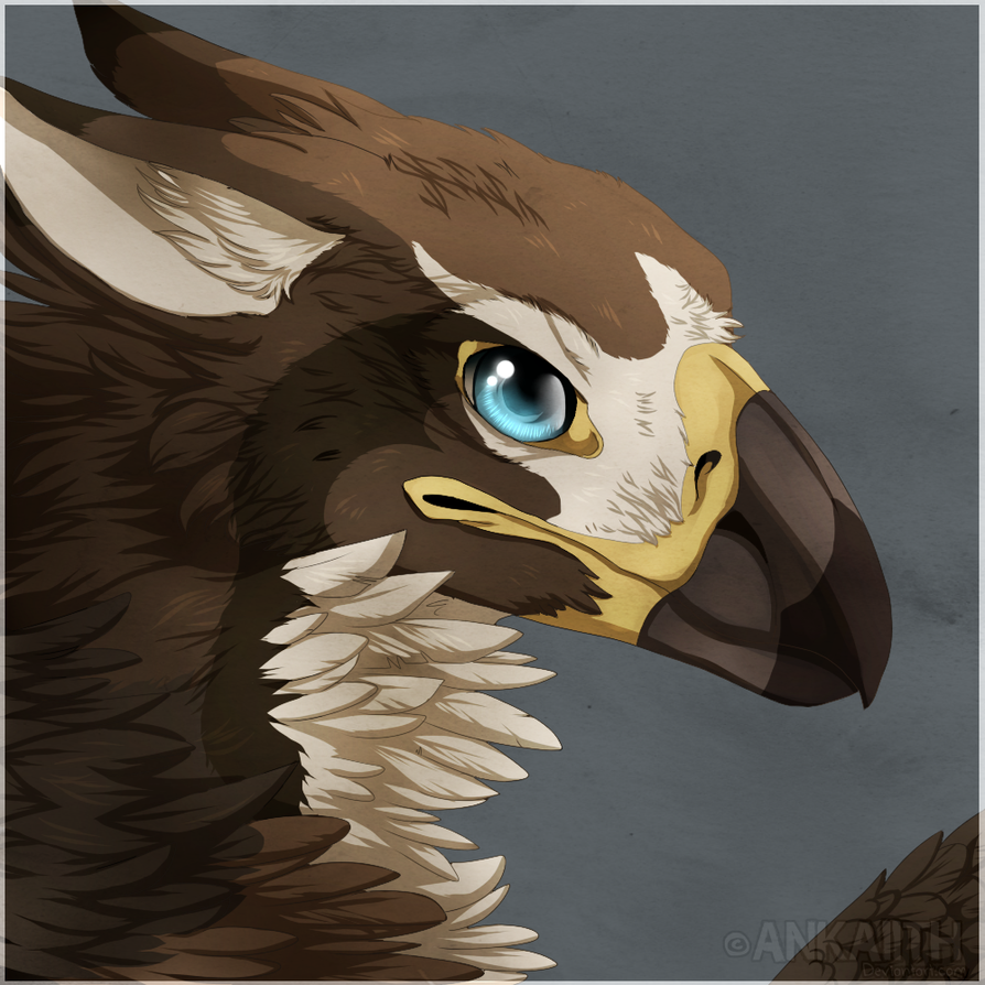 ruffled [open, male griffon.] Tantalum_icon_comm_laurence_by_ankaiith-d8clz16