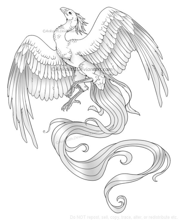 Phoenix Design by Ankaiith
