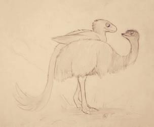 Emu by Crocofielius