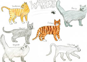 Warrior Cats by Rainbowgal