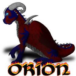 WOF: Dragon Profiles: Orion by Rainbowgal