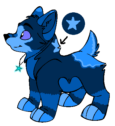 blue_wolf_pup_adoptable_open_1_point_by_maplekennels d52dlx8