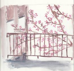WWRC Blossoms in Summer 11' by LisaSparda716