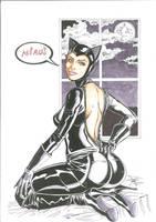 Catwoman by danjoker