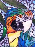 Catalina Macaw Mosaic WIP - 03 by Dreamspirit