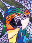 Catalina Macaw Mosaic WIP - 03