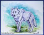 Wolf's Rain Fan Art - Kiba